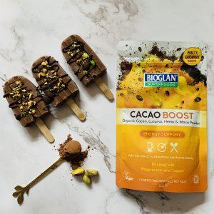 Vegan Cacao Ice Lollies